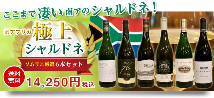 南アフリカワイン専門店 ソムリエ厳選シャルドネ6本セット