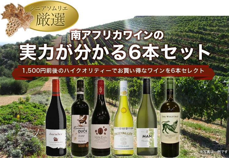 南アフリカワインの実力6本セット